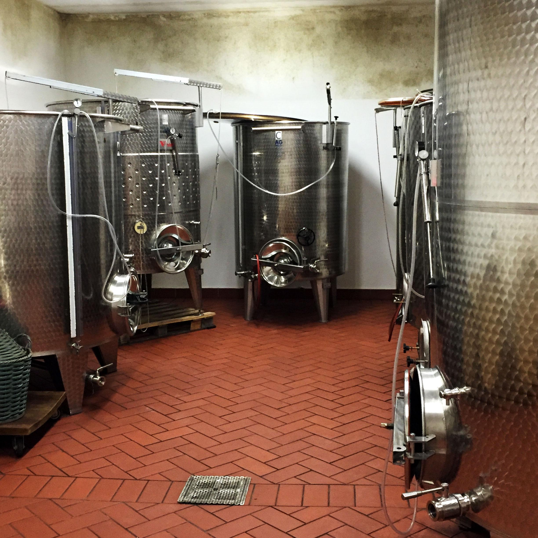 Podere Marcampo produzione di vini la cantina