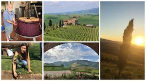 Podere Marcampo WineBlogRoll